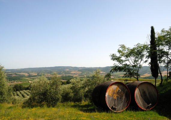 Tuscany countryside and barrels
