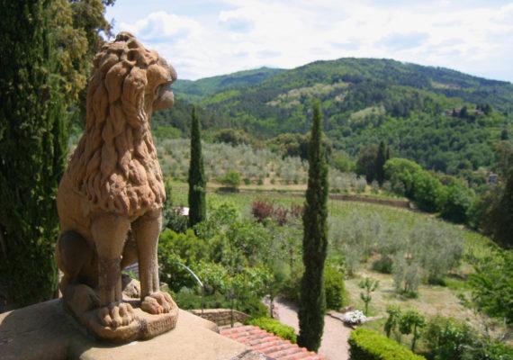 View from a Villa in Chianti
